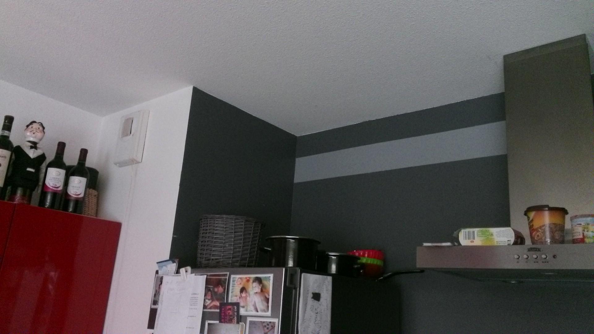 Design folie cuisine for Peinture cuisine gris clair